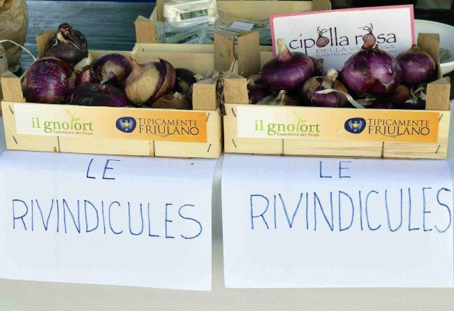 015-_DSC2788 - LE RIVINDICULES (CIPOLLA ROSA DI CASTELNOVO).jpeg.medium