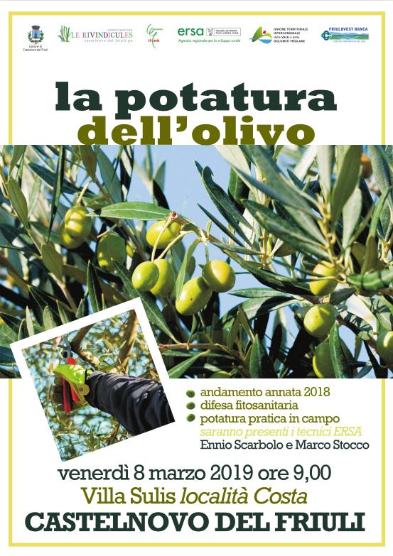 potatura dell'olivo marzo 2019